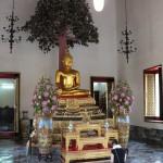 Bouddhas sous un arbre