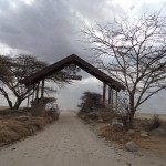 Entrée Serengeti